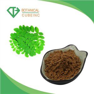 High Quality Moringa Oleifera Moringa Leaf Extract Powder